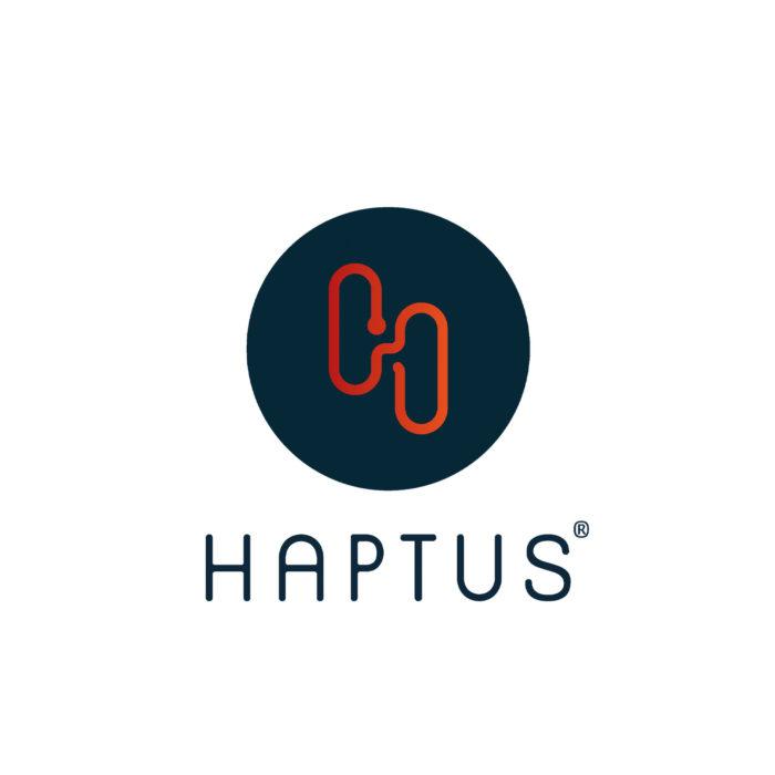 Logogestaltung Haptus Würzburg