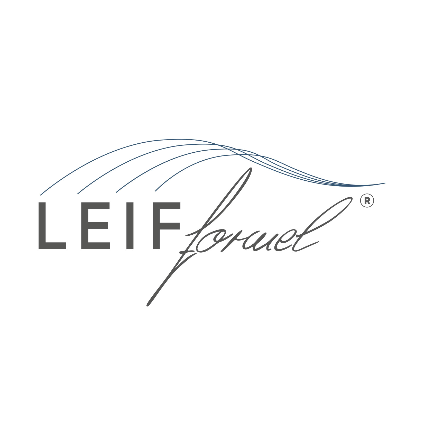 Leif-Formel Corporate Design Würzburg
