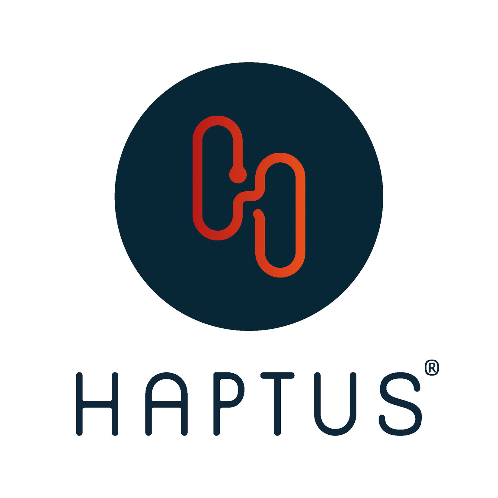 Haptus Corporate Design