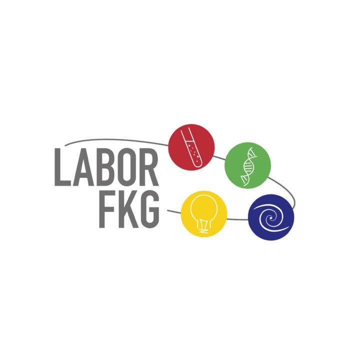 Logogestaltung Friedrich König Gymnasium Labor Würzburg
